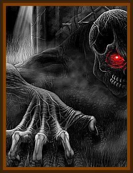 Black Beast Seen