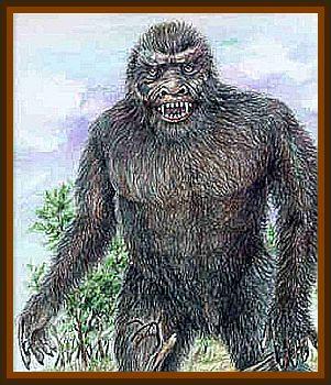 Black Beast Encounted Near Gresford