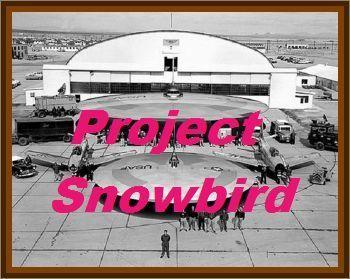 Project Snowbird