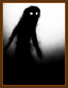 Anne Williams Shadow Person Encounter