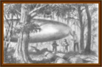 Gary Wilcox UFO Landing & Occupant Case
