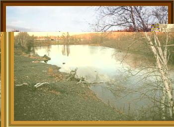 3 Boys Watch Craft Land On River Bank