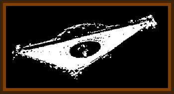 Belgium Triangle UFO Sightings