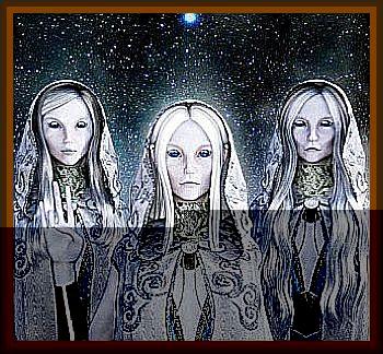 Night of the Living Dolls